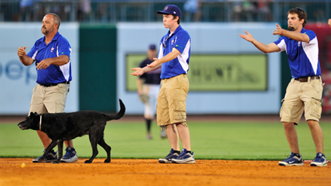 Monty Sowell (left) and Ruby, his black lab, help entertain the crowd.